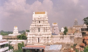 sri-kalahasti-temple-view_1_700_01